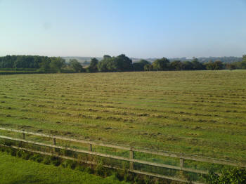 Establish Healthy Grass for Cropping or Grazing